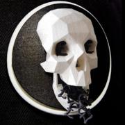 Skull - Closeup